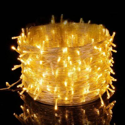 Luci Natale Esterno 100M 500 LEDs Impermeabile Catena Luminosa