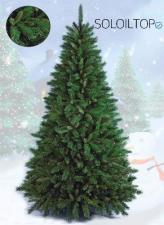 Un albero di Natale da tenere in considerazione