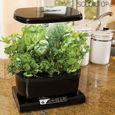kit idroponica aerogarden